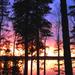 Fények és színek