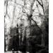 Alcsútdoboz, Arborétum