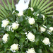 058. / görög koszorú -15 rózsa fejből