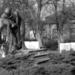 Vác, Posta Park, II. Világháborús emlékmű