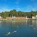 Úszás a tóban
