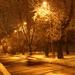 Utca,fák,hó,szellemautó...