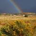US 2010 Day24  078 Rainbow In Utah