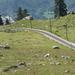 Svájc, Jungfrau Region, Wilderswil, Schynige Platte Bahn, SzG3