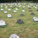 I. világháborús temető