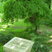 Margitsziget első kertépítője